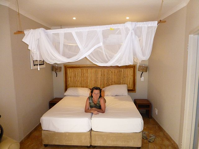 onze kamer, met links achter naast de houten plank de spin (die je hier niet kan zien)